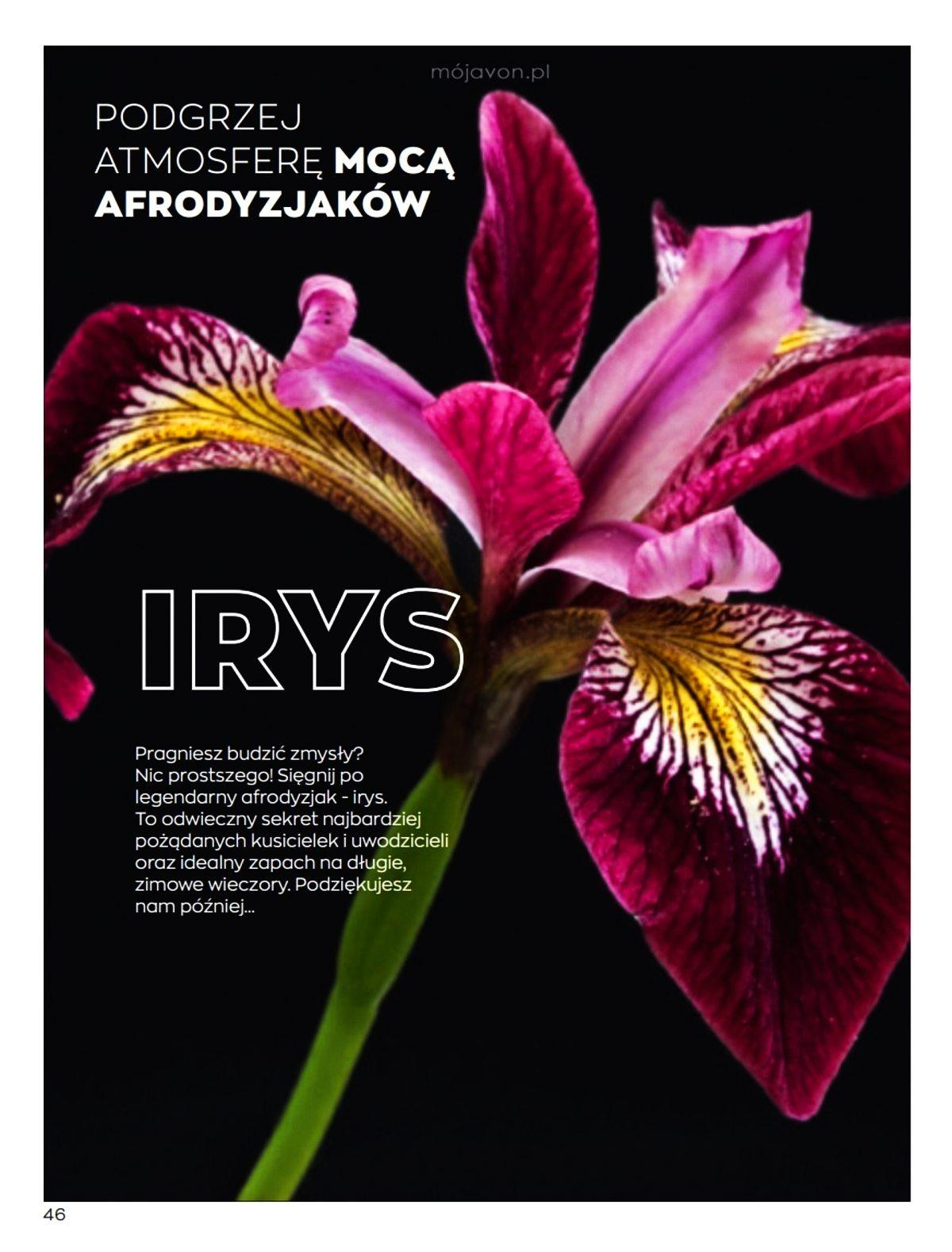 Gazetka promocyjna Avon do 05/02/2020 str.46