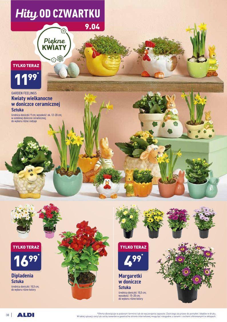 Gazetka promocyjna ALDI do 12/04/2020 str.38