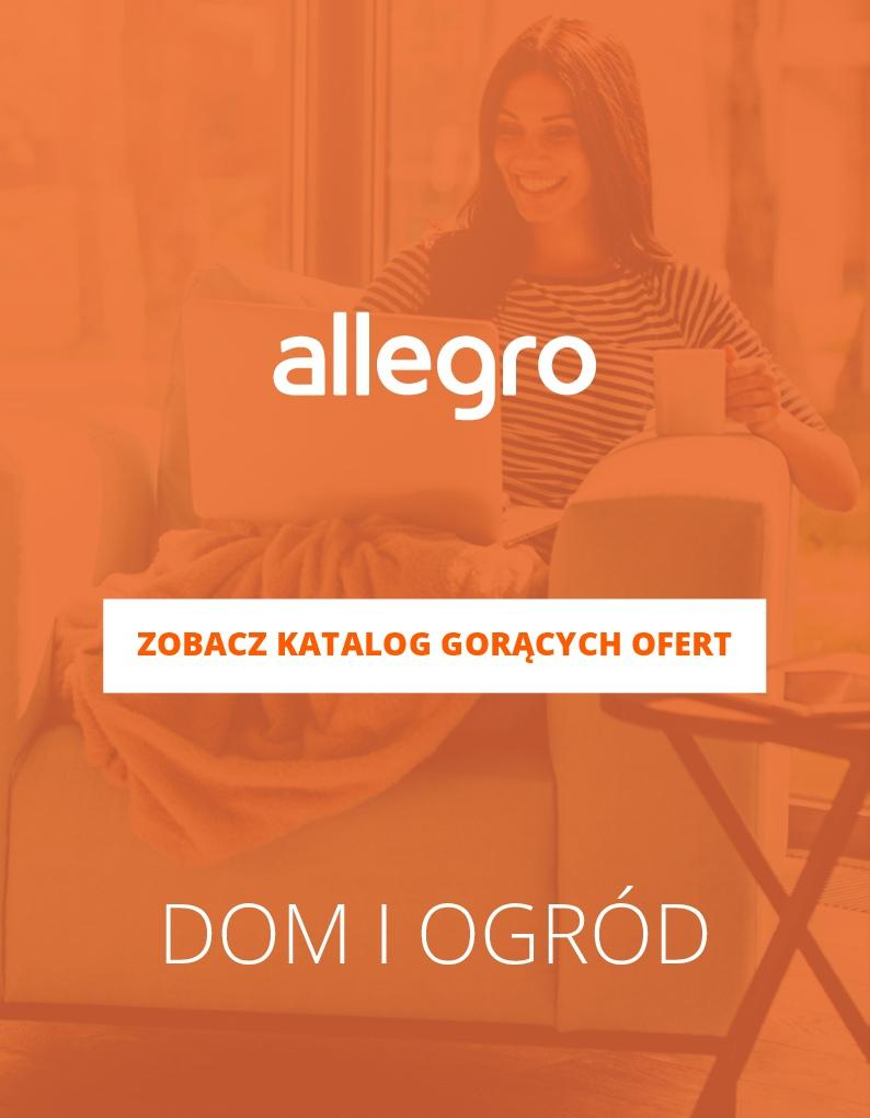 Gazetka promocyjna Allegro do 04/02/2018 str.0