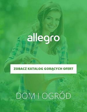 Allegro dom