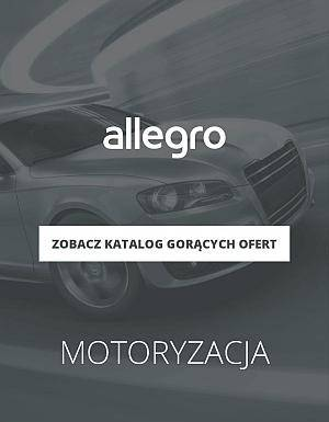 Allegro motoryzacja