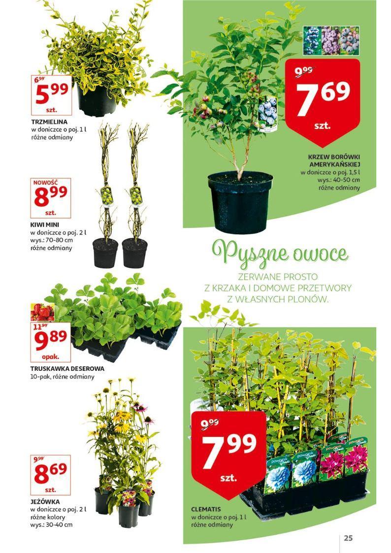 Gazetka promocyjna Auchan do 30/04/2019 str.24