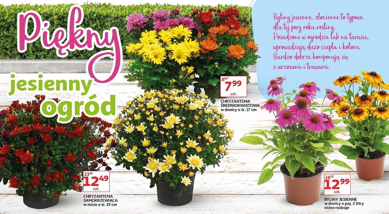 Gazetka promocyjna Auchan do 13/09/2018 str.4