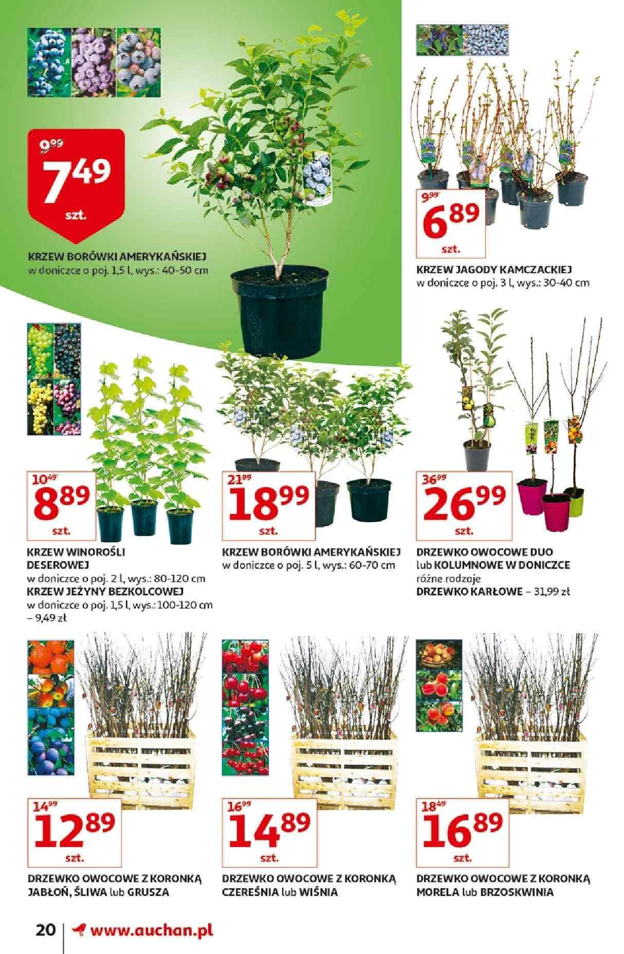 Gazetka promocyjna Auchan do 31/03/2019 str.19