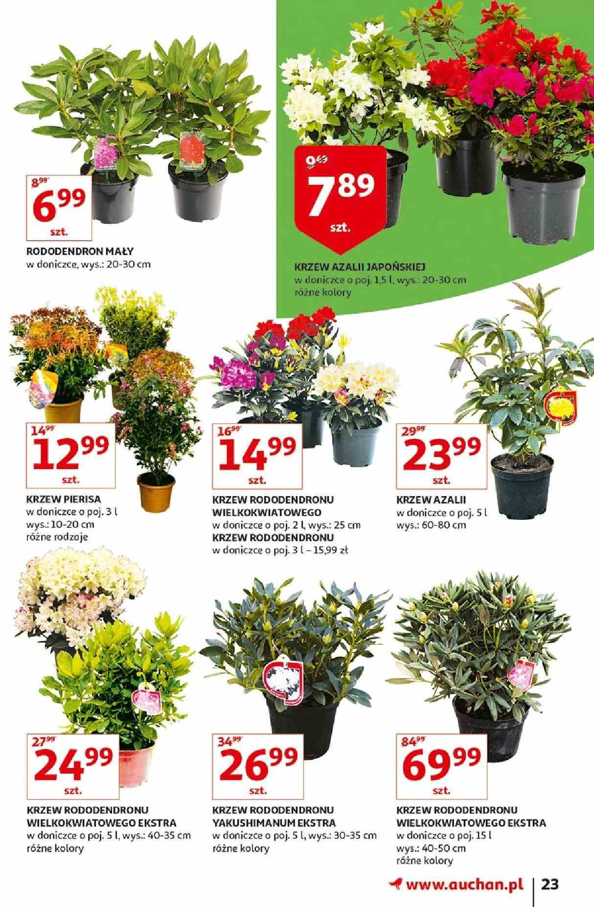 Gazetka promocyjna Auchan do 31/03/2019 str.22