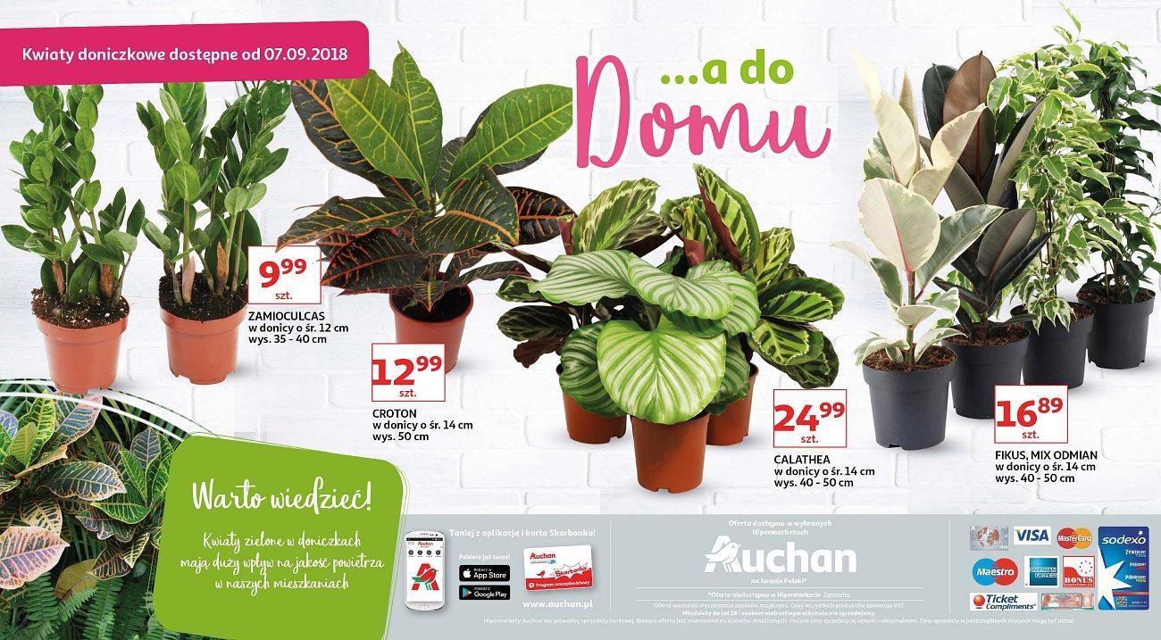 Gazetka promocyjna Auchan do 13/09/2018 str.10