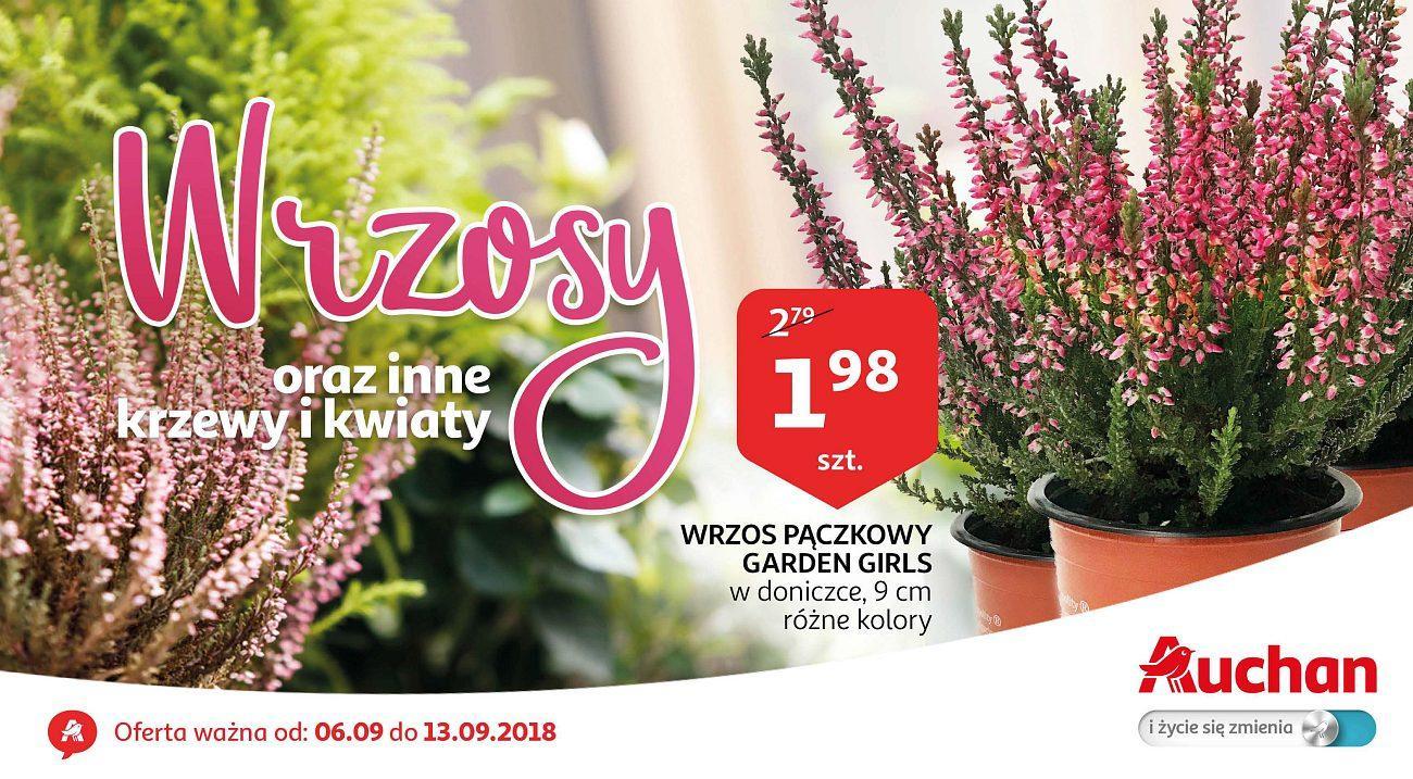 Gazetka promocyjna Auchan do 13/09/2018 str.1