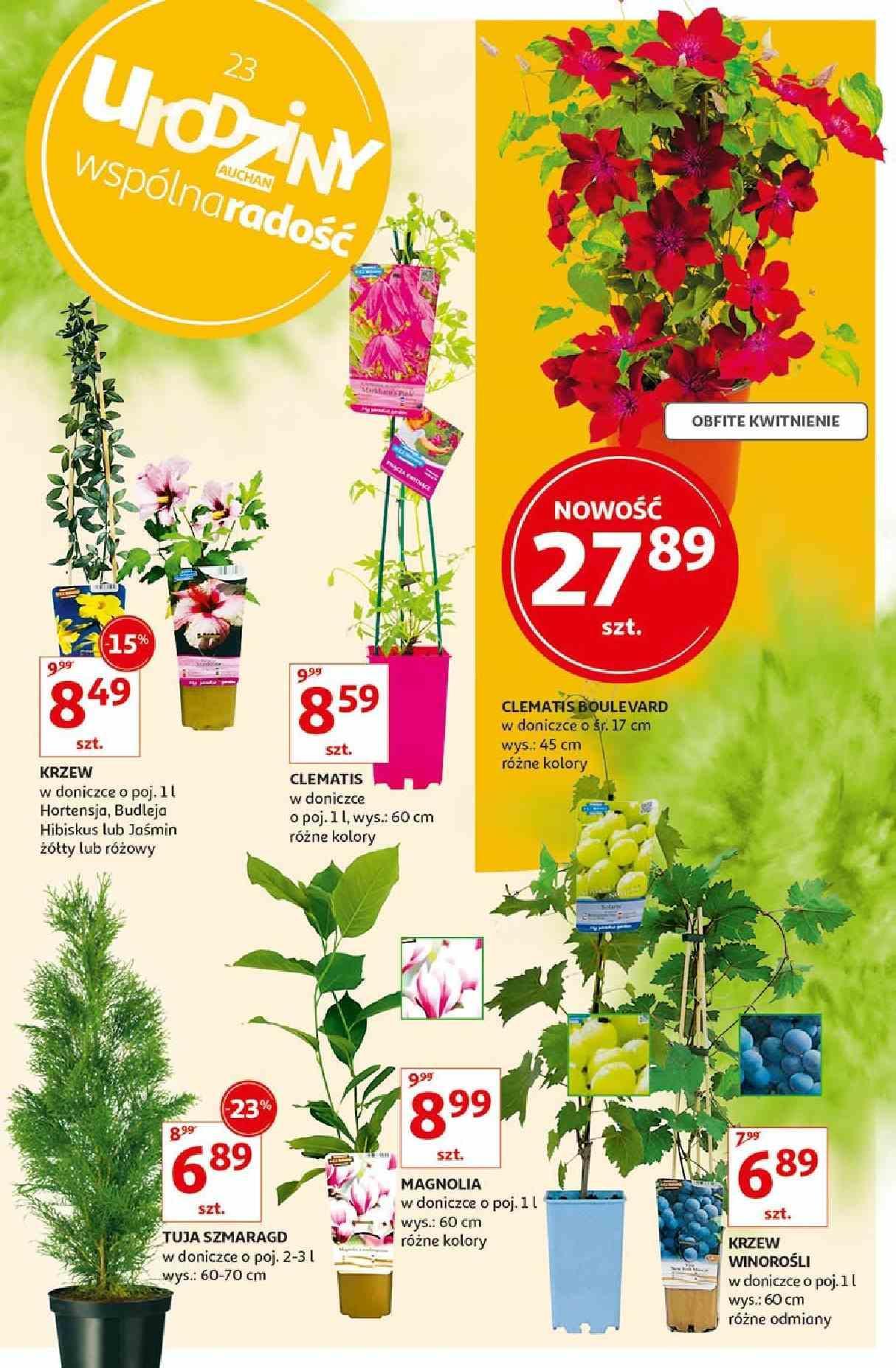 Gazetka promocyjna Auchan do 06/05/2019 str.6