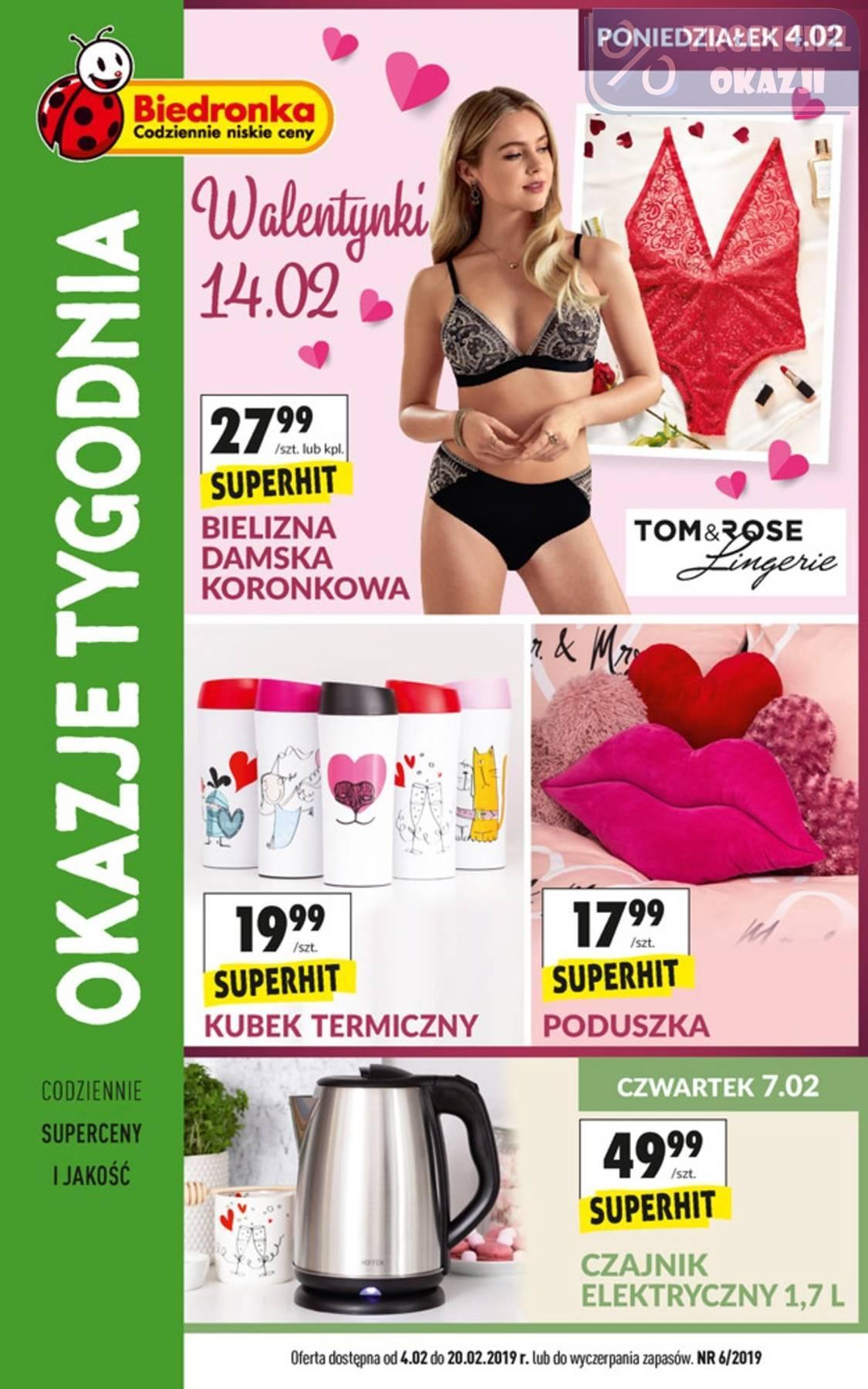 Gazetka promocyjna Biedronka do 20/02/2019 str.0