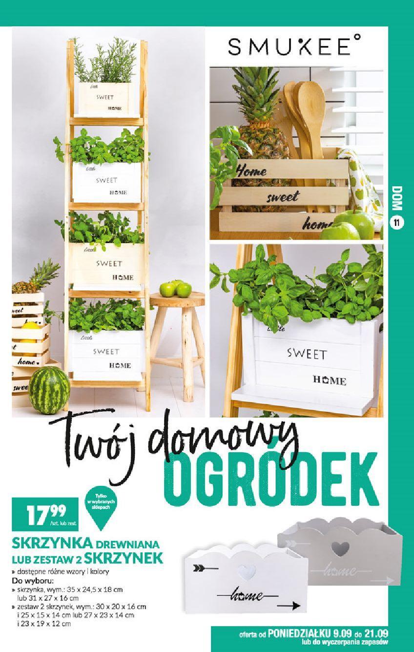 Gazetka promocyjna Biedronka do 25/09/2019 str.11
