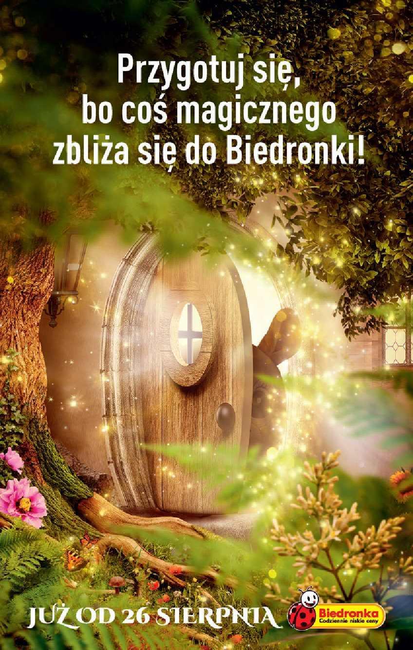 Gazetka promocyjna Biedronka do 28/08/2019 str.63