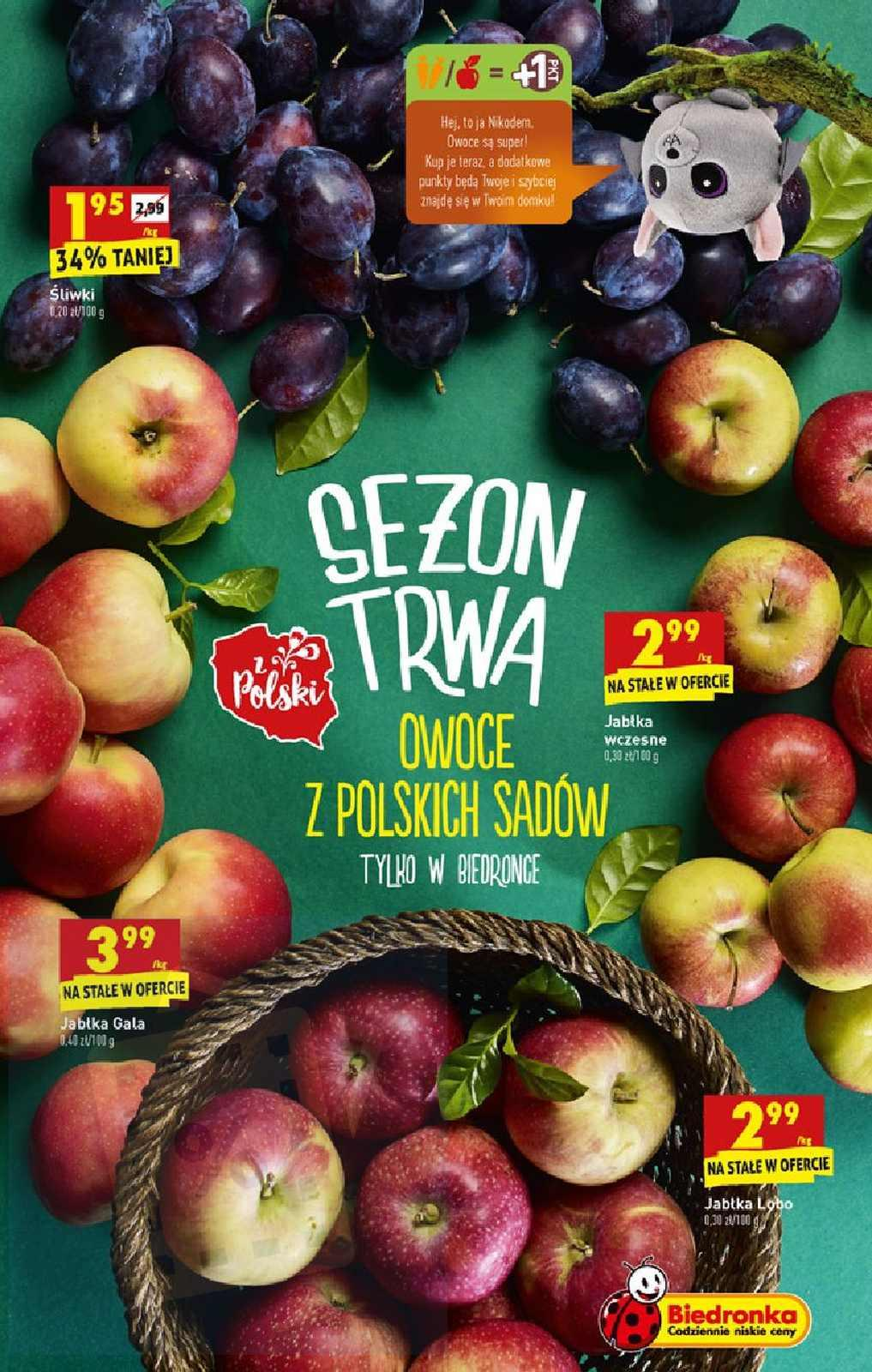 Gazetka promocyjna Biedronka do 14/09/2019 str.13