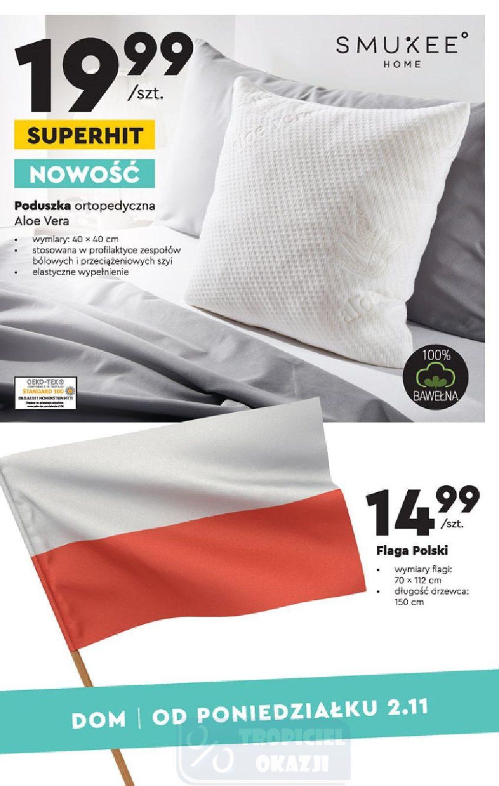 Gazetka promocyjna Biedronka do 18/11/2020 str.15