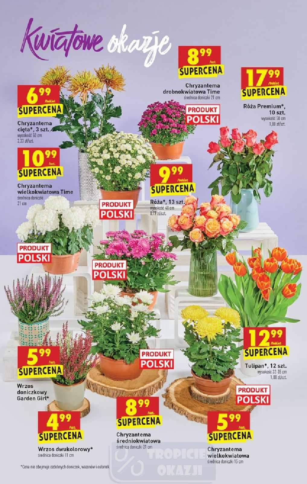 Gazetka promocyjna Biedronka do 04/11/2020 str.19