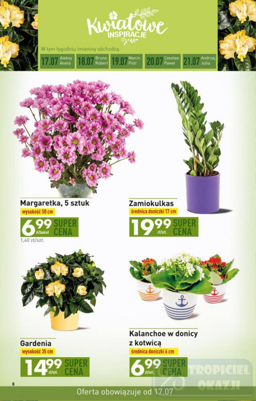 Gazetka promocyjna Biedronka do 23/07/2017 str.8
