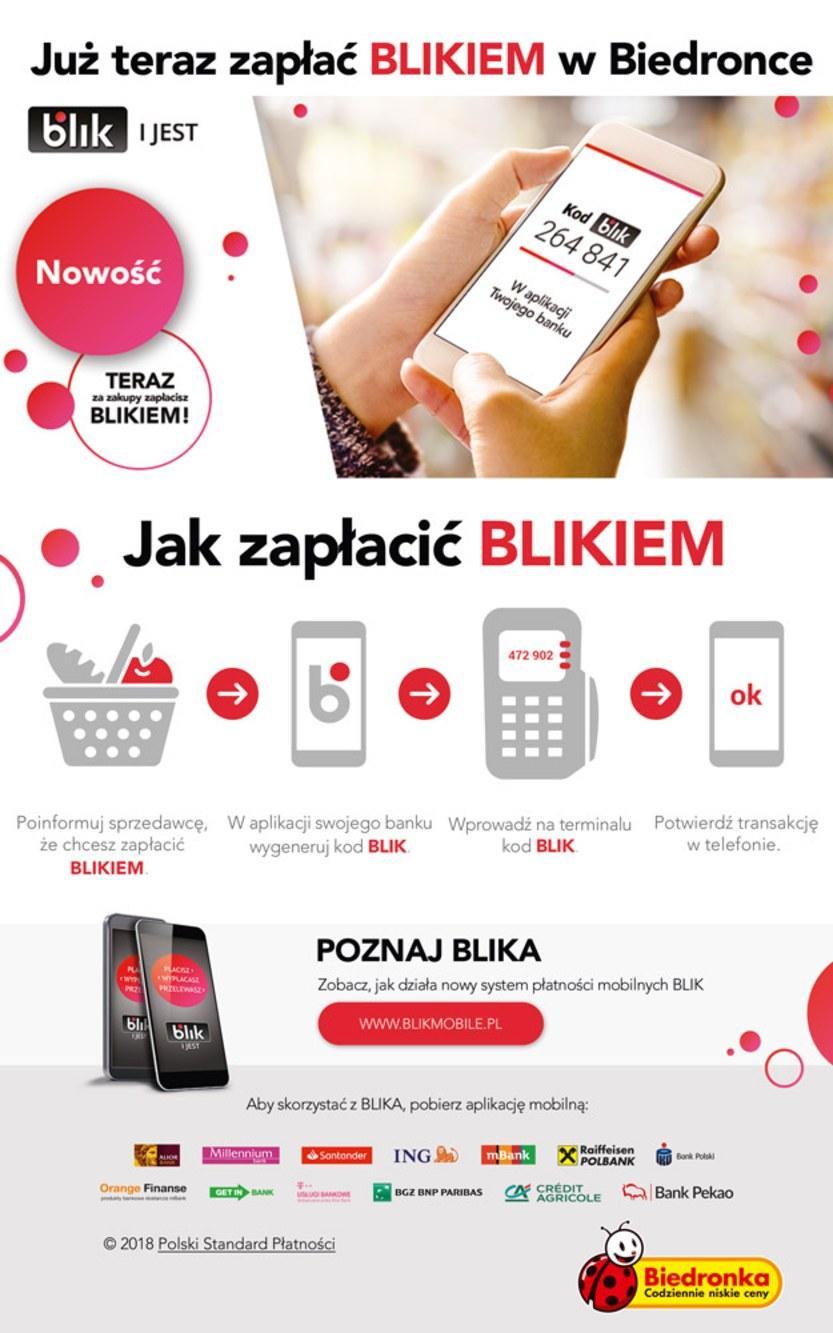 Gazetka promocyjna Biedronka do 22/09/2018 str.51