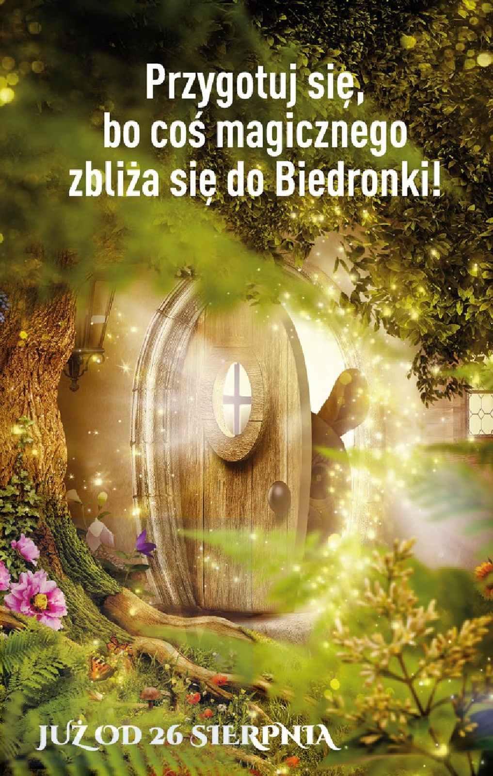 Gazetka promocyjna Biedronka do 25/08/2019 str.63