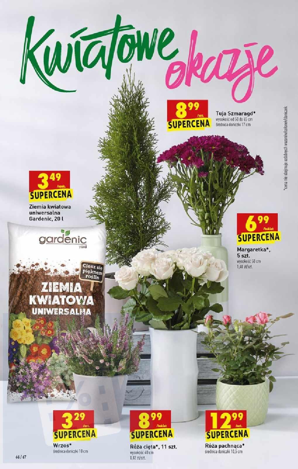 Gazetka promocyjna Biedronka do 04/09/2019 str.65