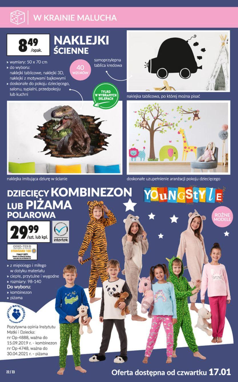 Gazetka promocyjna Biedronka do 30/01/2019 str.22