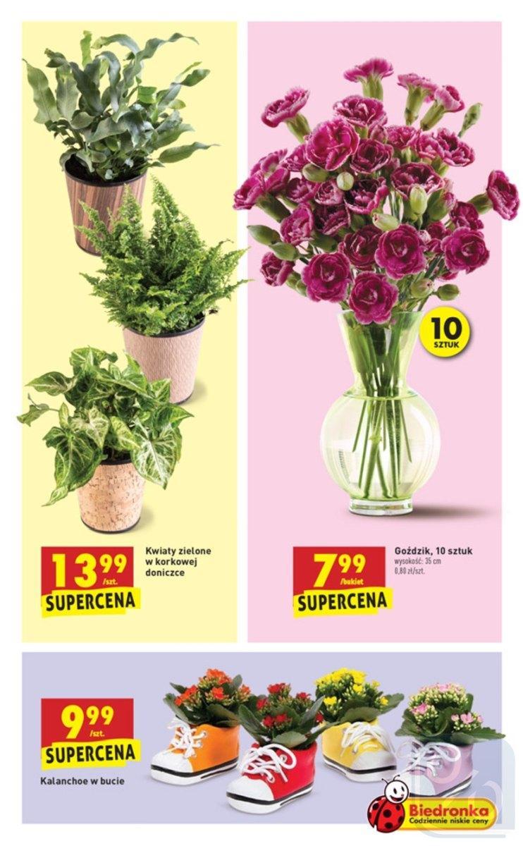Gazetka promocyjna Biedronka do 16/06/2018 str.38