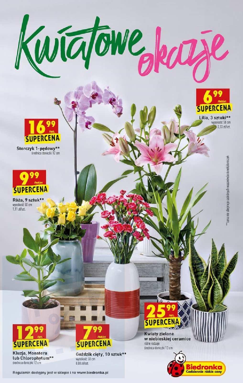 Gazetka promocyjna Biedronka do 25/08/2019 str.62