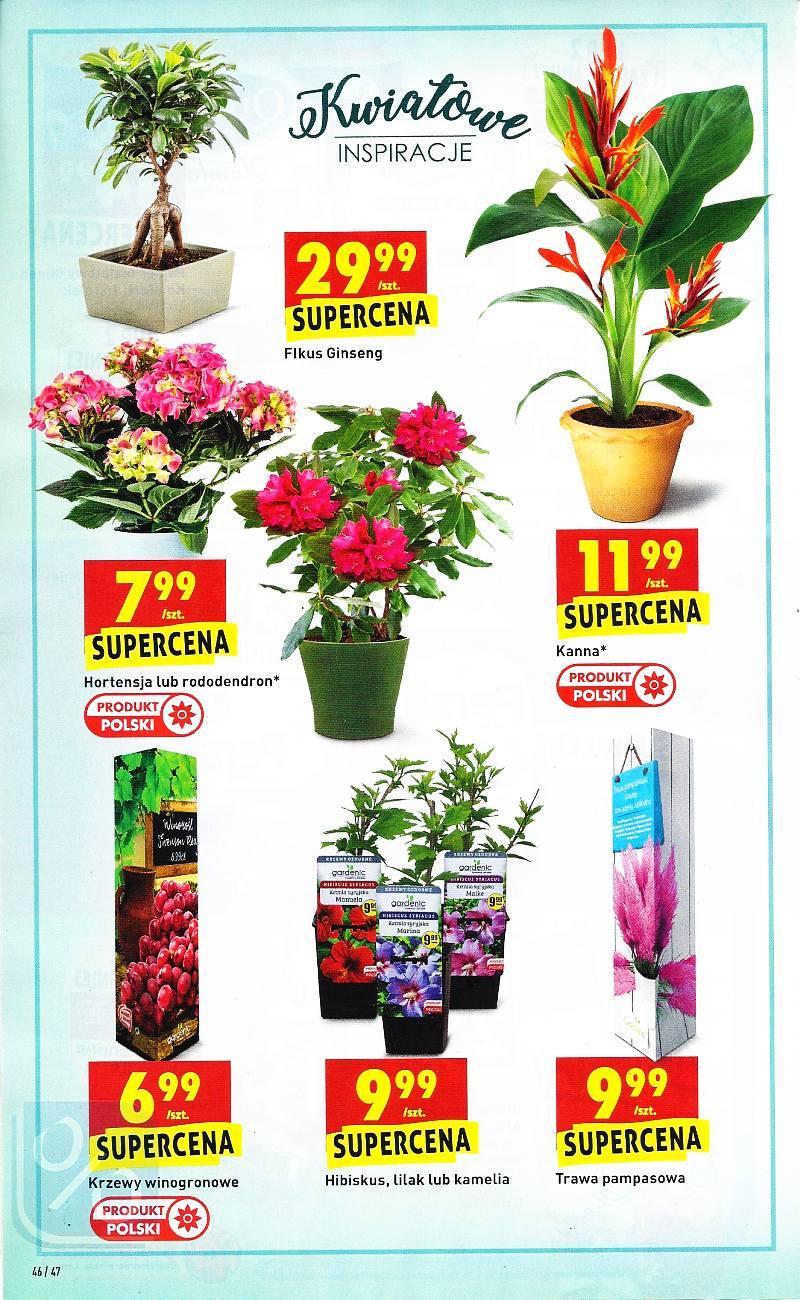 Gazetka promocyjna Biedronka do 16/05/2018 str.45
