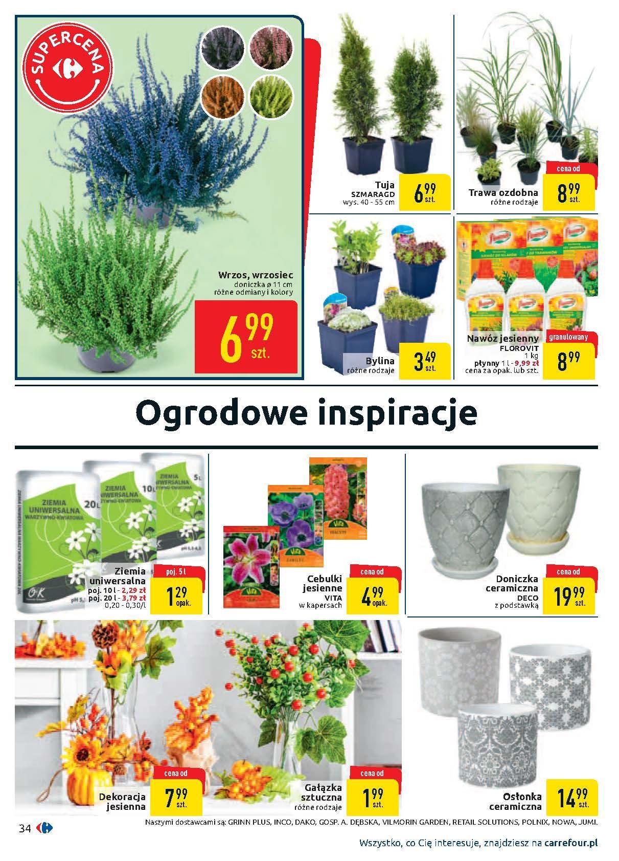 Gazetka promocyjna Carrefour do 14/09/2019 str.33