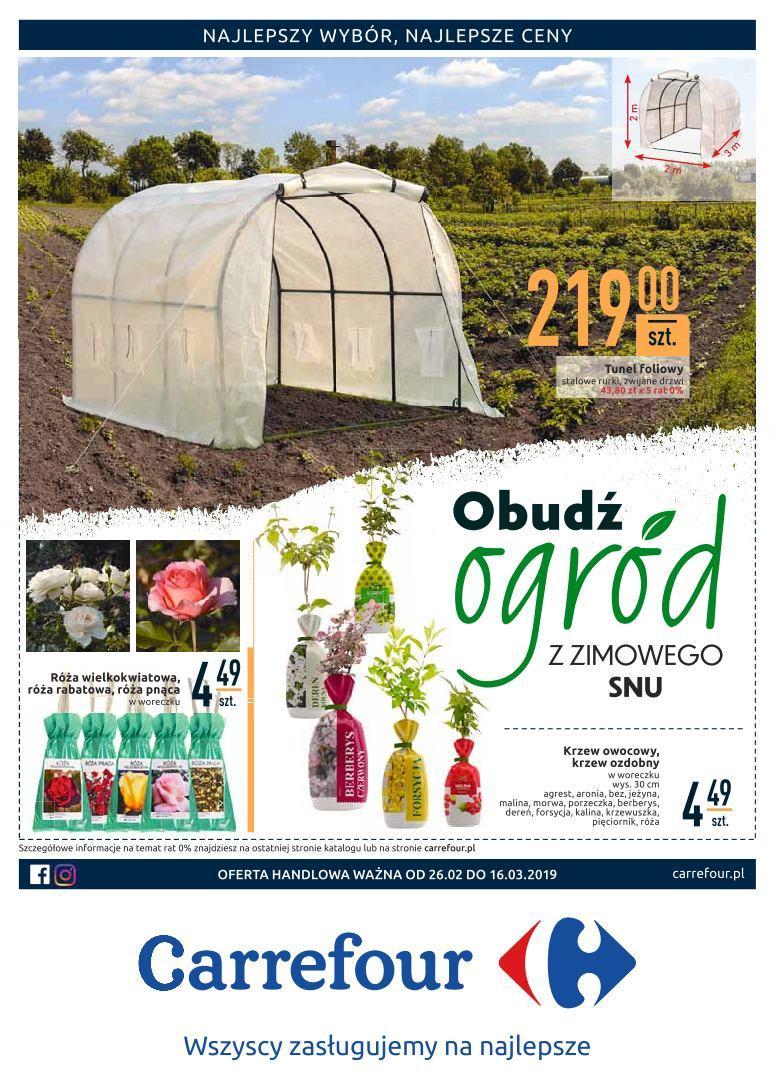 Gazetka promocyjna Carrefour do 16/03/2019 str.0