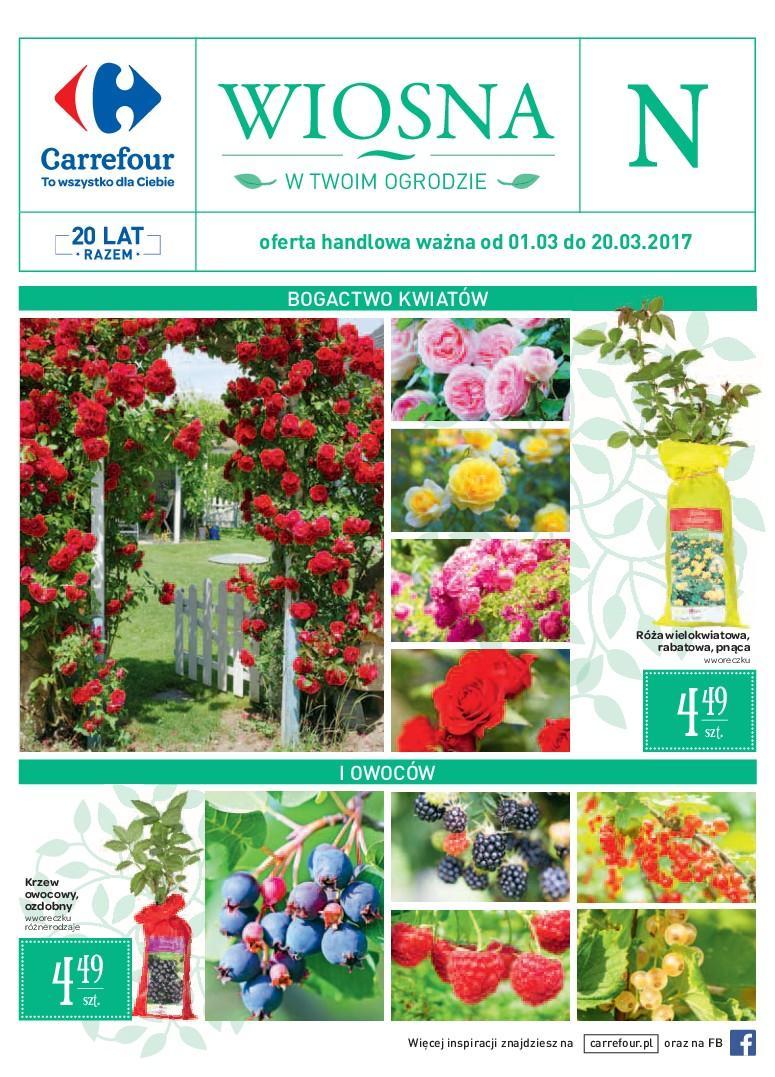 Gazetka promocyjna Carrefour do 20/03/2017 str.0