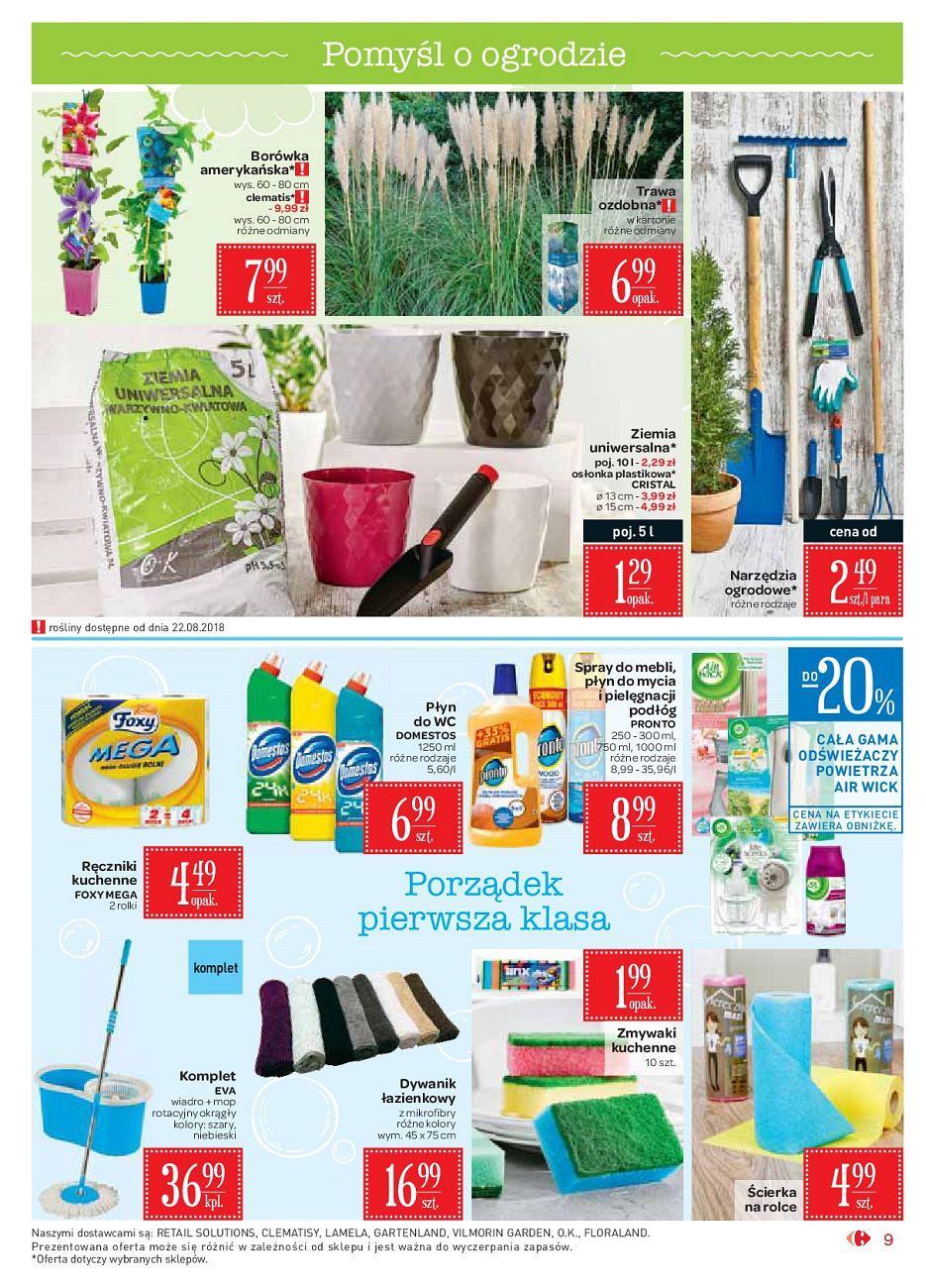 Gazetka promocyjna Carrefour Market do 02/09/2018 str.9