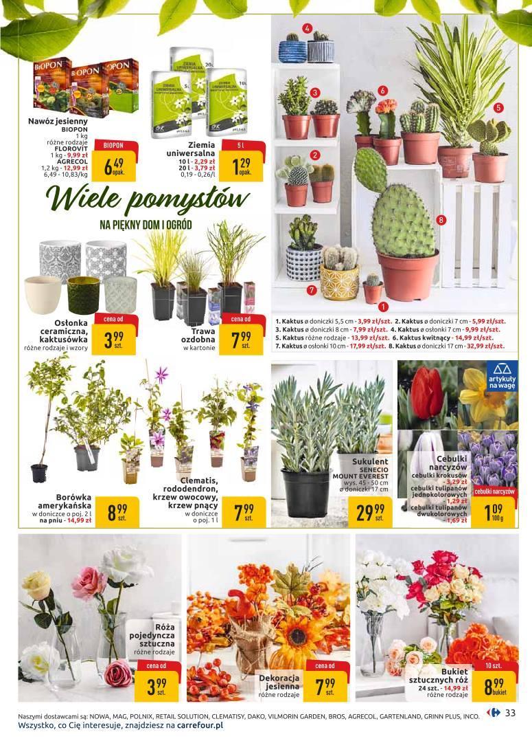 Gazetka promocyjna Carrefour do 07/09/2019 str.32