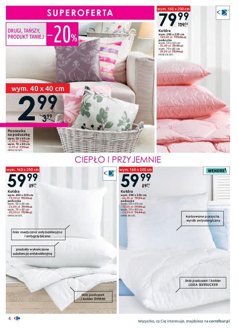 Gazetka promocyjna Carrefour do 19/01/2019 str.4