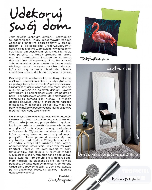 Gazetka promocyjna Castorama do 31/01/2019 str.2