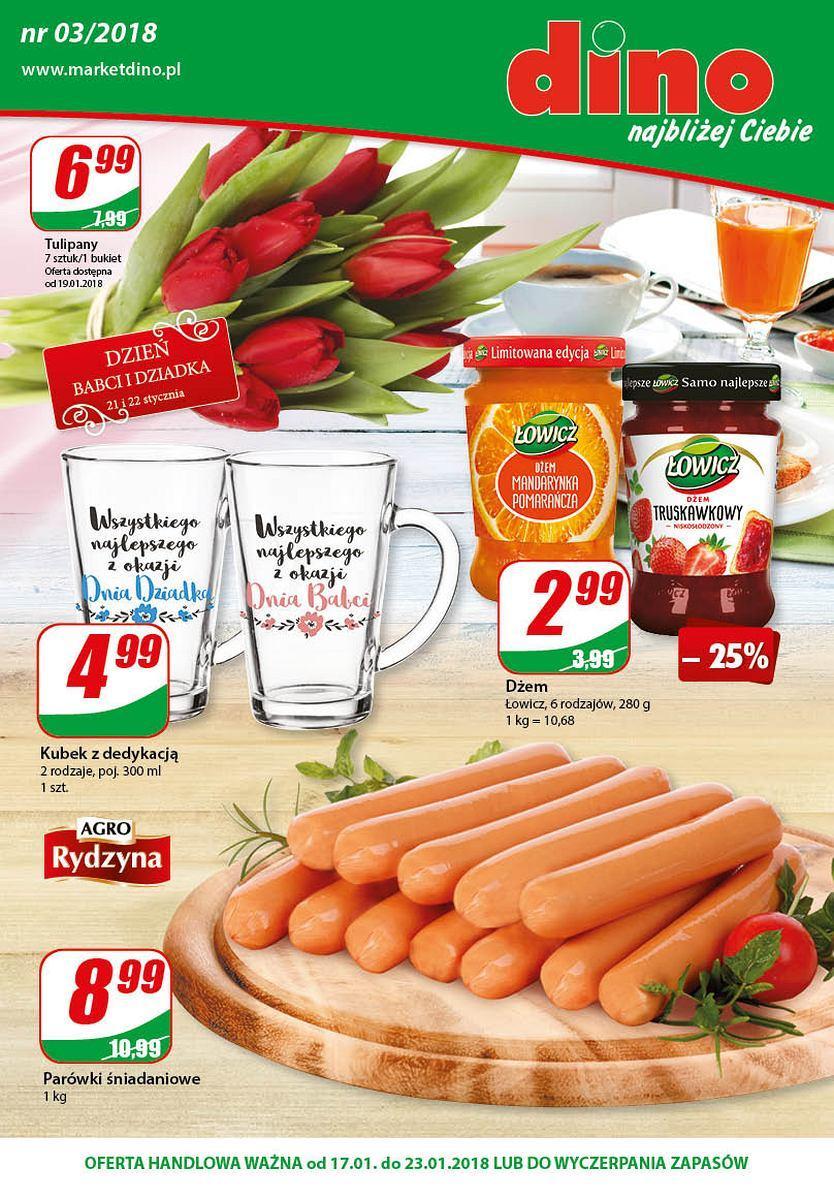 Gazetka promocyjna DINO do 23/01/2018 str.0