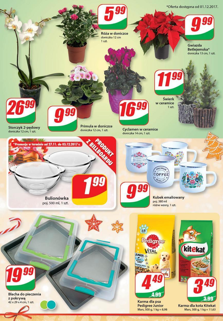 Gazetka promocyjna DINO do 05/12/2017 str.13