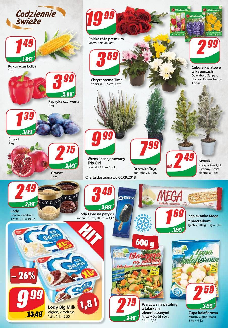 Gazetka promocyjna DINO do 11/09/2018 str.4