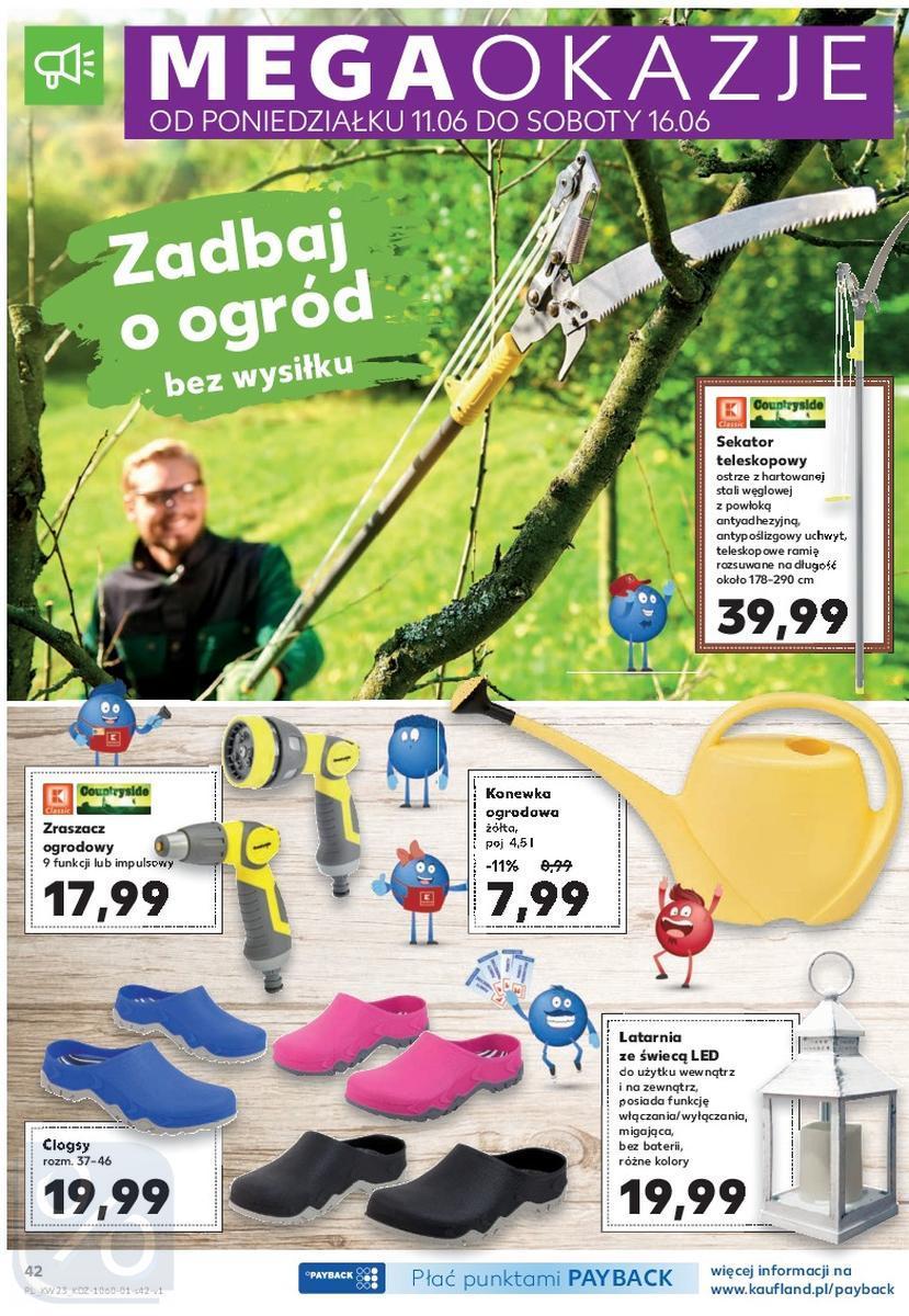 Gazetka promocyjna Kaufland do 13/06/2018 str.42