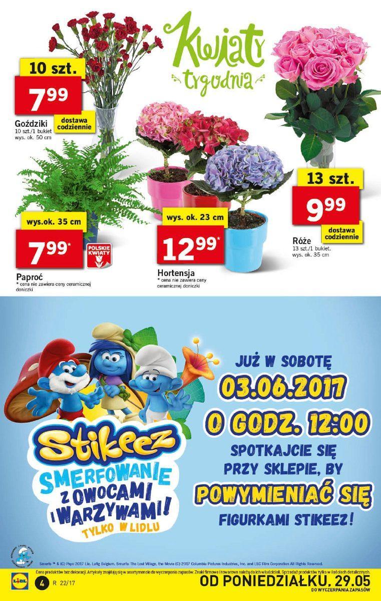 Gazetka promocyjna Lidl do 31/05/2017 str.3