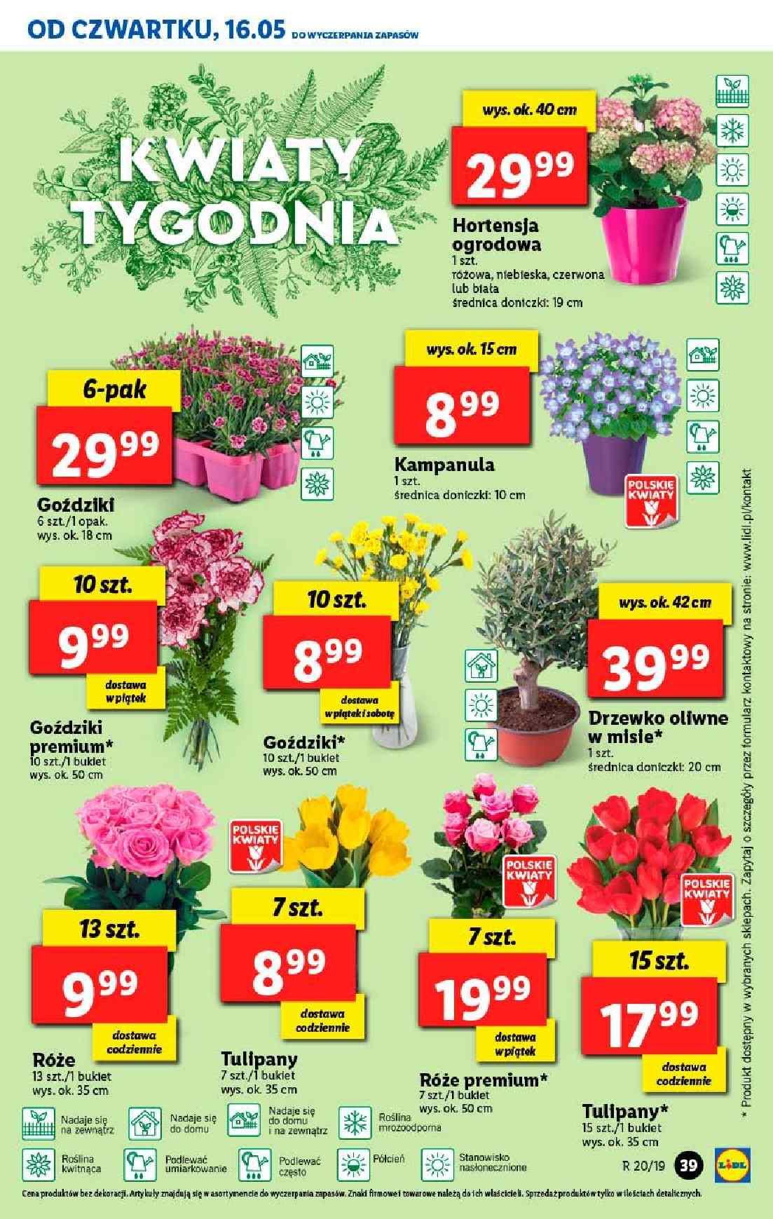 Gazetka promocyjna Lidl do 19/05/2019 str.39