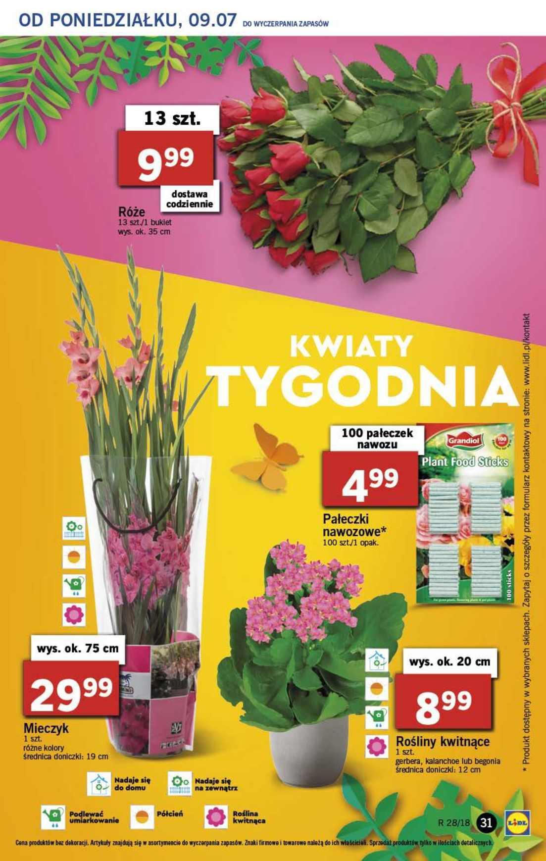 Gazetka promocyjna Lidl do 11/07/2018 str.30