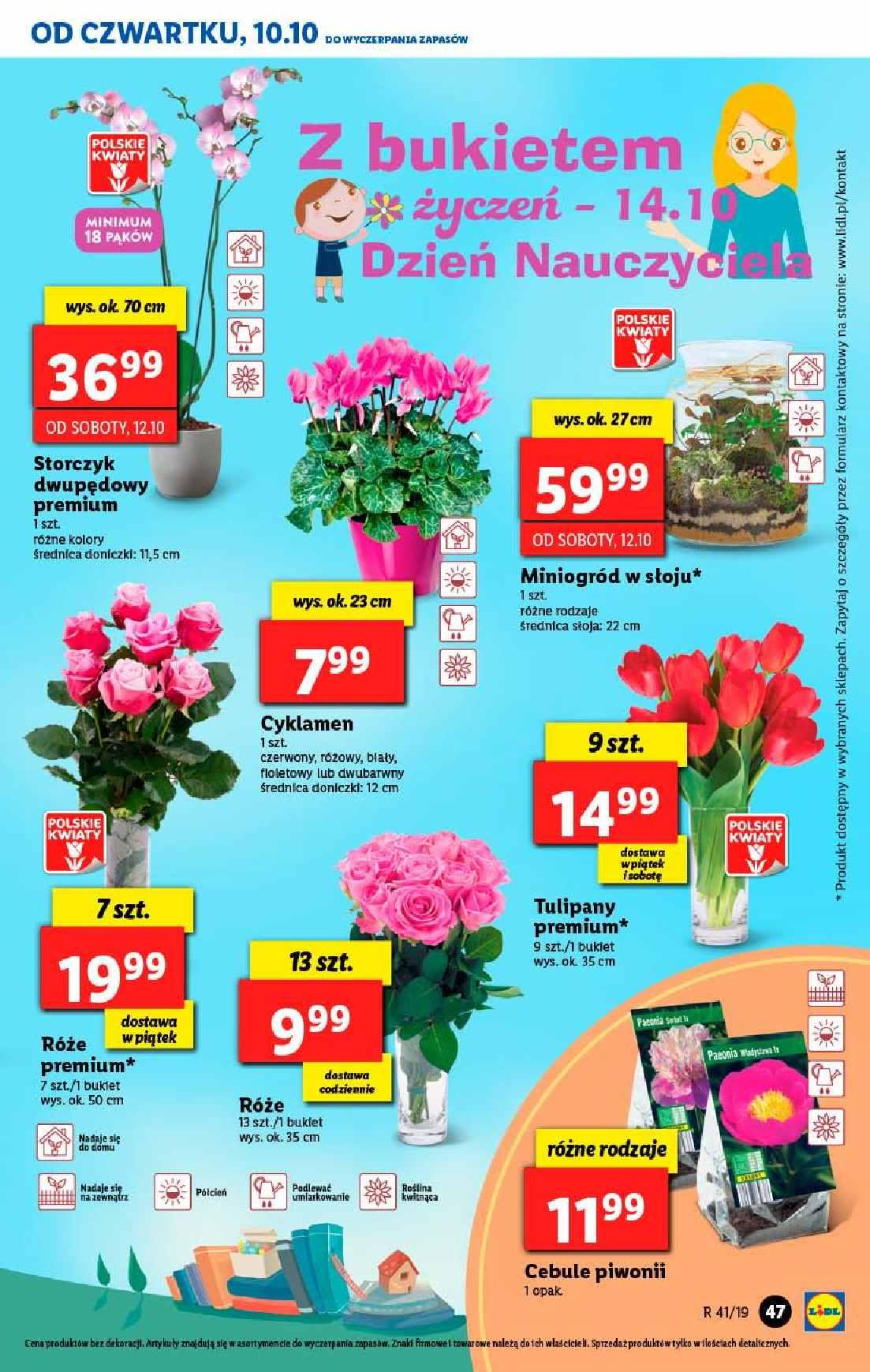 Gazetka promocyjna Lidl do 12/10/2019 str.47