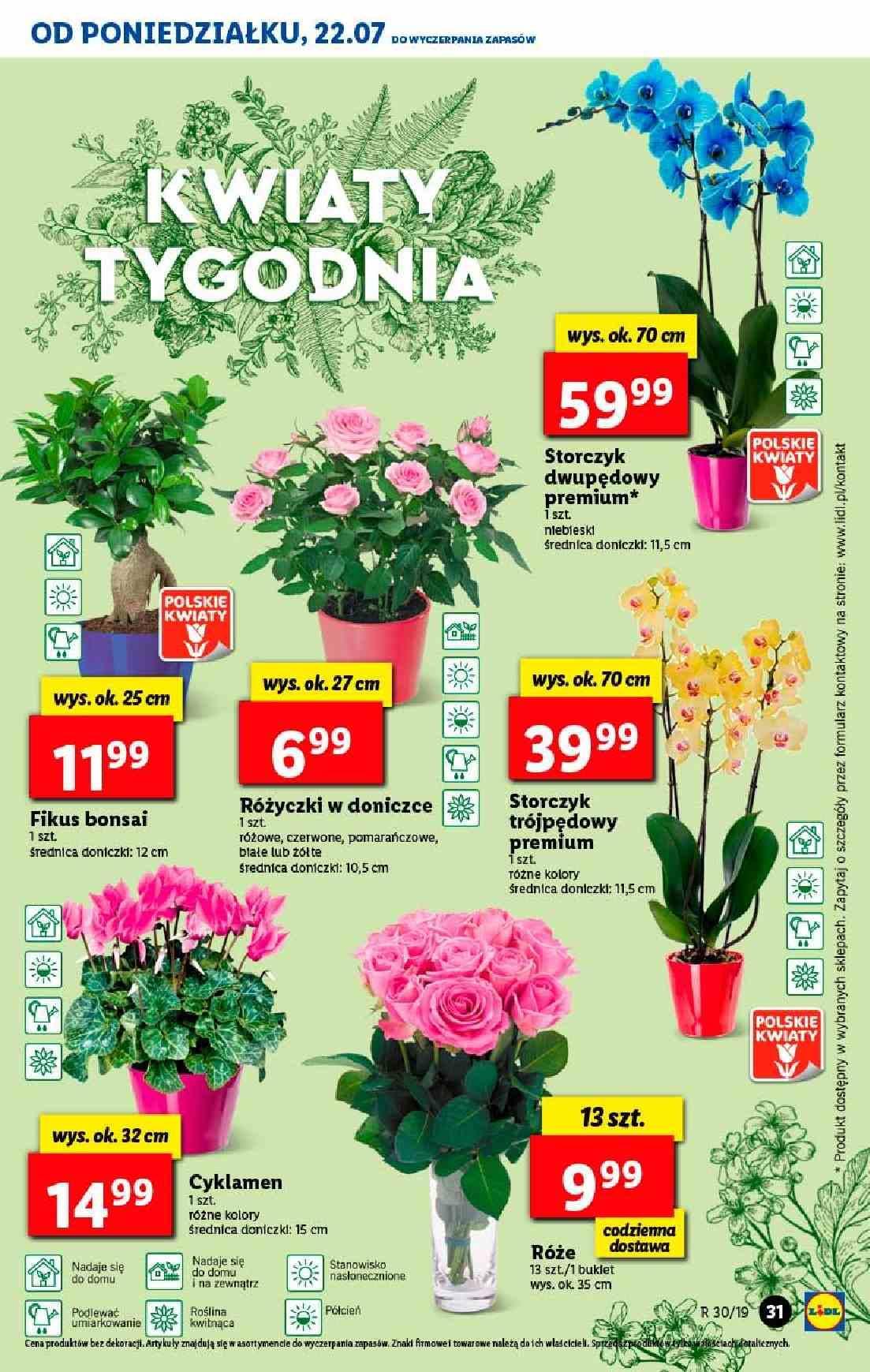 Gazetka promocyjna Lidl do 24/07/2019 str.31