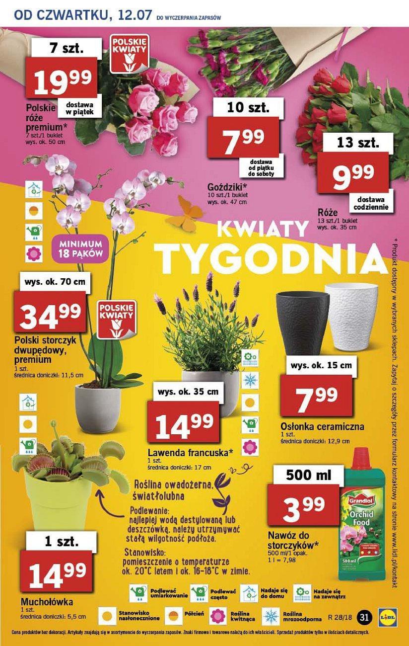 Gazetka promocyjna Lidl do 14/07/2018 str.31