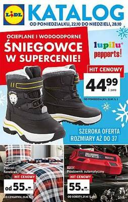 Lidl gazetka - od 22/10/2018 do 28/10/2018