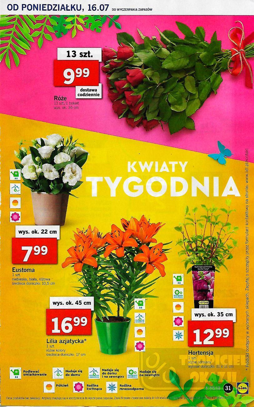 Gazetka promocyjna Lidl do 18/07/2018 str.30