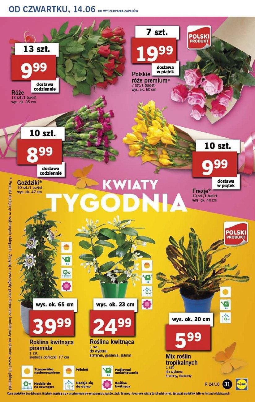 Gazetka promocyjna Lidl do 16/06/2018 str.30