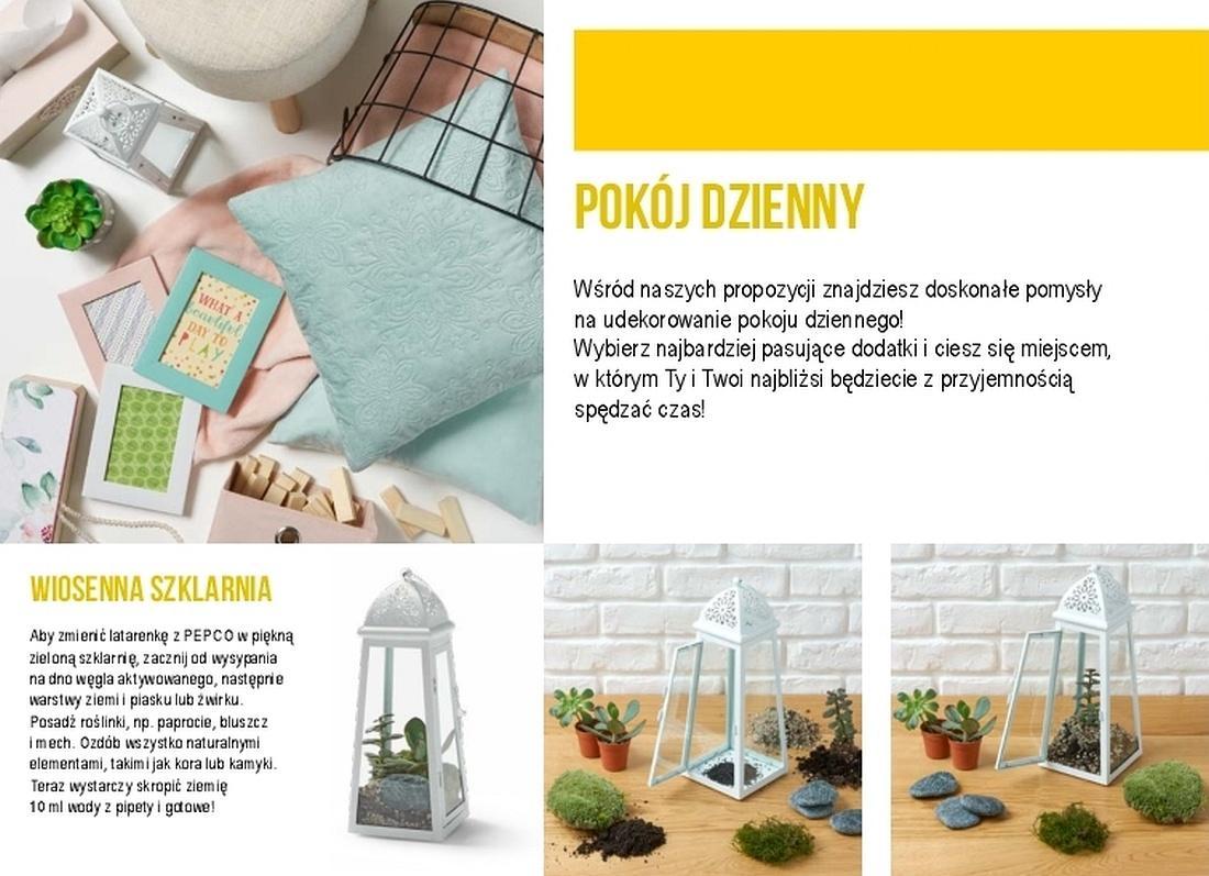 Gazetka promocyjna Pepco do 30/06/2018 str.3