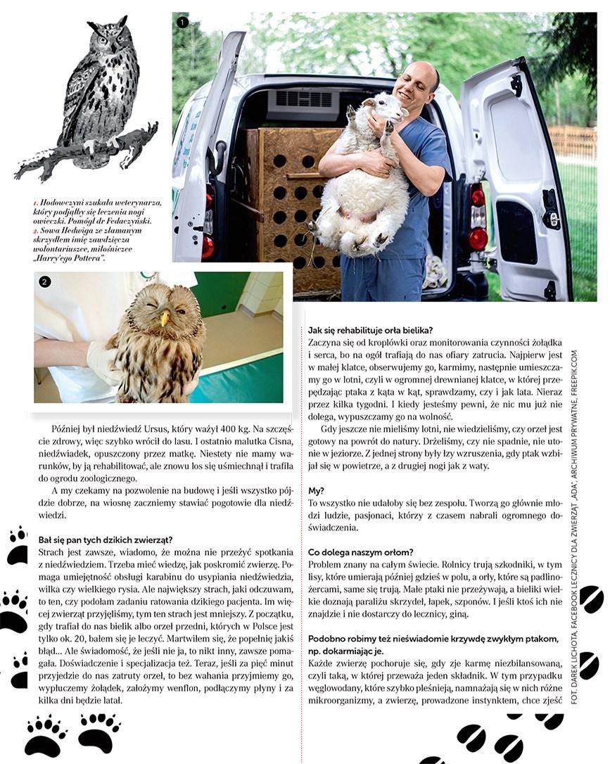 Gazetka promocyjna Rossmann do 28/02/2019 str.70