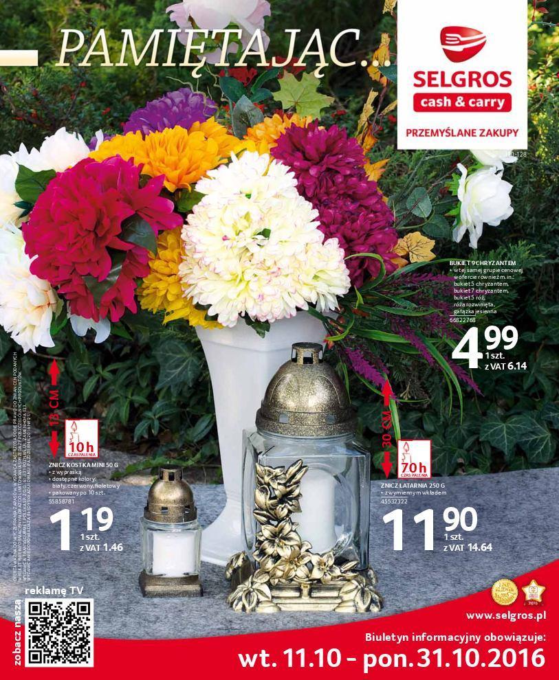 Gazetka promocyjna Selgros do 24/10/2016 str.0