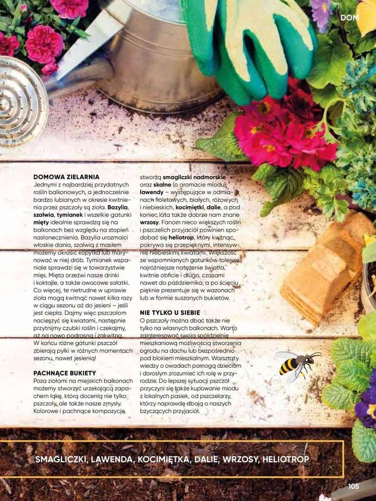 Gazetka promocyjna Tesco do 25/08/2019 str.105